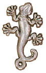 Gecko Lizard Sterling Silver Charm Pendant Photo Main
