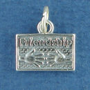Friendship Plate Two Out Stretched Hands Sterling silver Charm Message Pendant