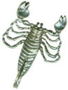 Astrology Zodiac Sign Charm Scorpio 3D Sterling Silver Charm Pendant