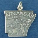 State of Arkansas Sterling Silver Charm Pendant and Cities Little Rock, Fort Smith and Hot Springs with Picture of State Flower Tickseed, Cat Tails and Pig