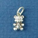 Assorted Small Charm Sterling Silver Image