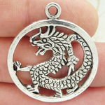 Silver Dragon Pendant Disk in Antique Pewter Medium