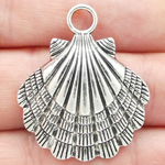 Silver Sea Shell Charm Large in Antique Pewter